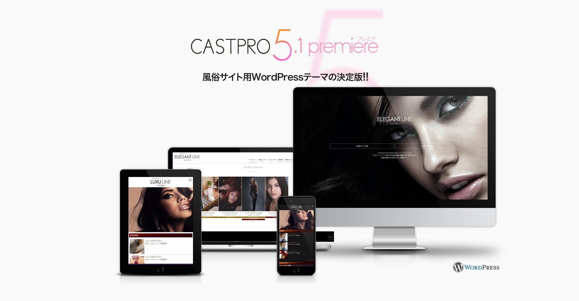 風俗サイト用WordPressテーマの決定版!!CASTPRO5(キャストプロ)